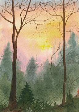 Hill Sunset