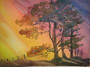 trees-heidi-brummer