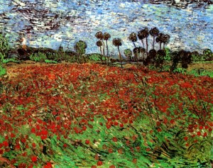 field-with-poppies