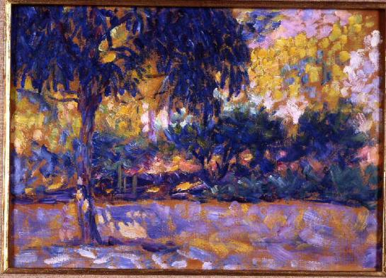 landscape-with-eucalyptus-trees-and-river-trees-in-front-of-a-river-1908