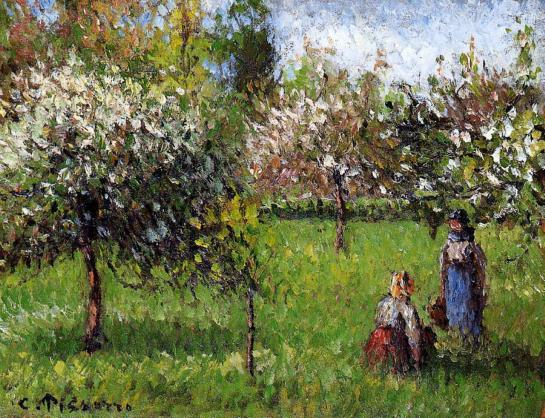 apple-blossoms-eragny